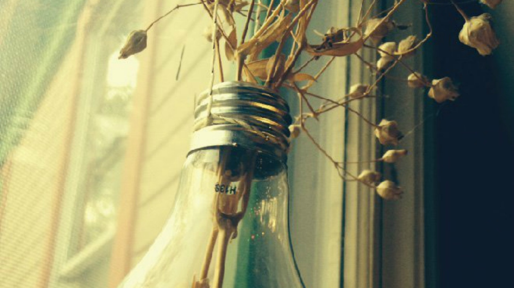 FEATURE | How To Create A Hanging Lightbulb Planter | DIY Bulb Planter