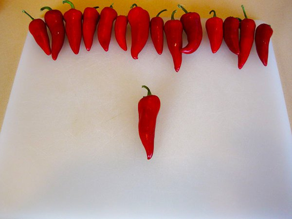 How to Make Homemade Sriracha Hot Sauce