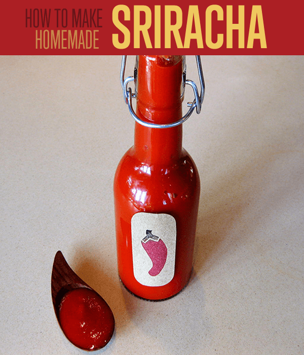homemade-hot-sauce-hot-sauce-sriracha-sriracha-hot sauce-sriracha-sauce-sriracha-butter-sriracha-sauce-coupon-sriracha-mayo-sriracha-peppers-subway-sriracha-review-sriracha-apple-grilled-cheese-sriracha-hot-chili-sauce-sriracha-on-grilled-cheese-and-apple-sandwich-with-sriracha-butter-sriracha-shutdown-sriracha-recipes