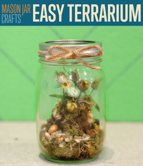 How To Make A Terrarium Diy Projects Craft Ideas Amp How To