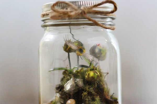 Terrariums in a Jar | Mason Jar Crafts You Can Make In Under An Hour [2nd Edition]