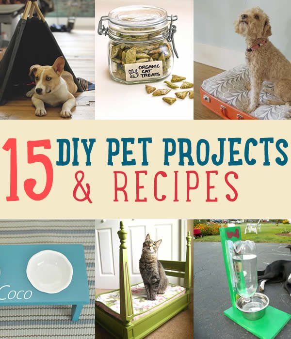 recipe ideas for your pets diy projects craft ideas how