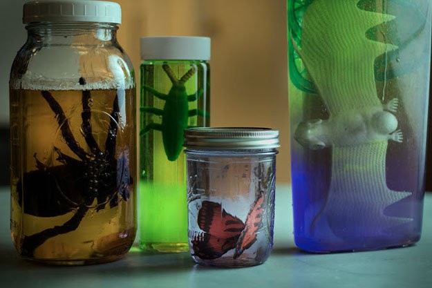 Specimen Jars | Easy Dollar Store Halloween Decorations You Should Try