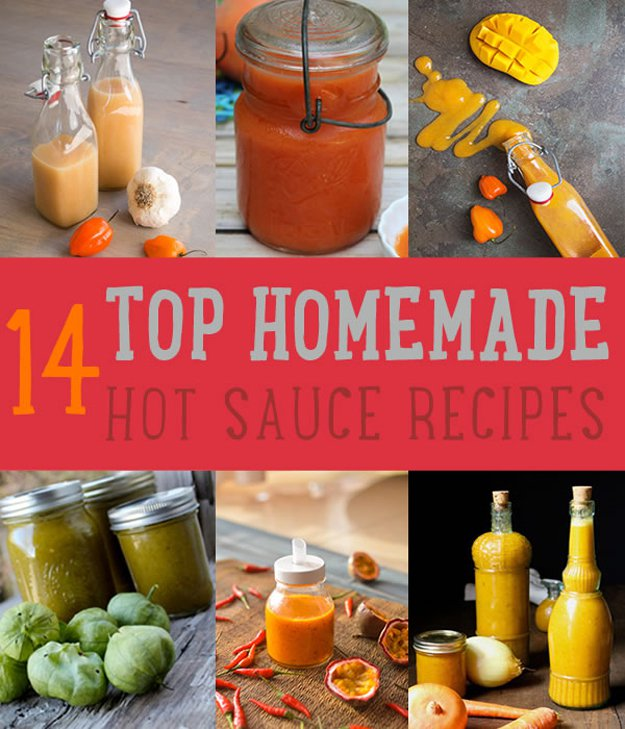 Top (Delicious) Hot Sauce Recipes You Can Make | https://diyprojects.com/homemade-hot-sauce-recipes/