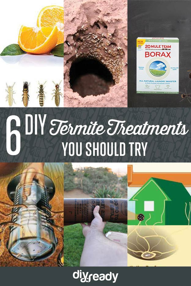 Check out 6 DIY Termite Treatments at https://diyprojects.com/diy-termite-treatment/