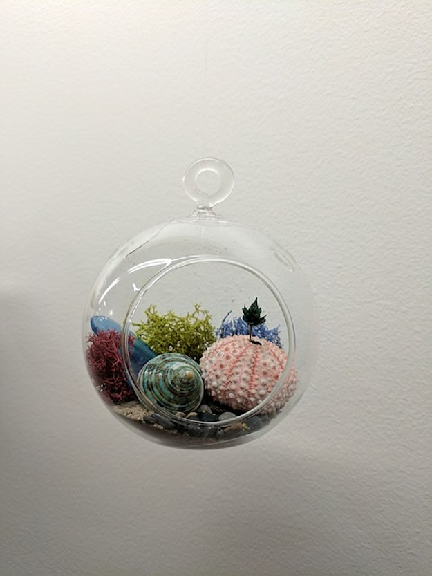 Check out DIY Projects to Make A Succulent Terrarium at https://diyprojects.com/make-succulent-terrarium/