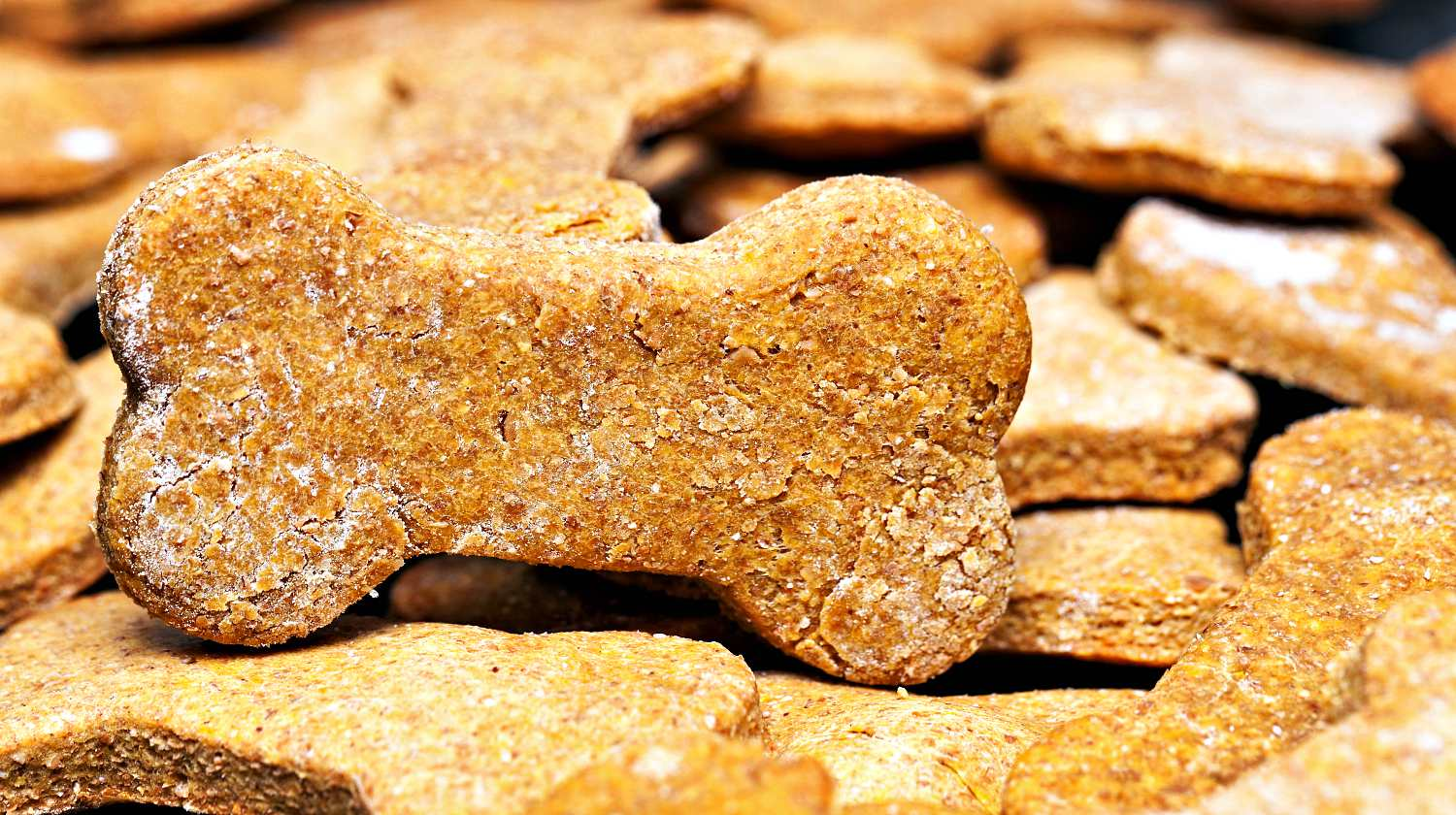 Feature | Large batch of bone-shaped homemade dog cookies | Homemade Dog Biscuits Recipe | How To Make Doggie Treats