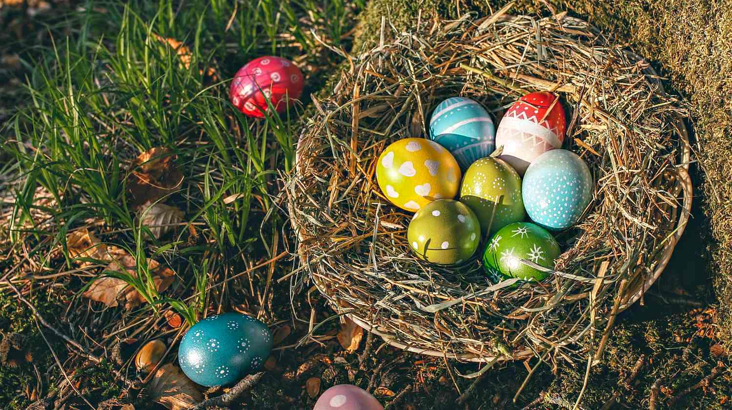 Feature | Assorted egg in the nest | Inventive Easter Egg Hunt Ideas Kids Will Love