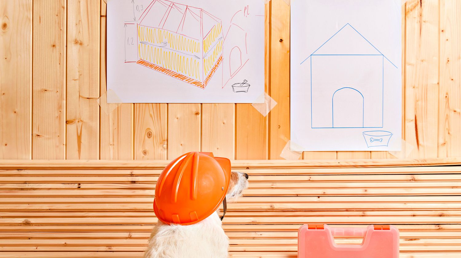 Dog as funny constructor with hardhat looking at blueprint of kennel | Awesome DIY Pet Projects To Keep Your Furry Friends Happy | Featured