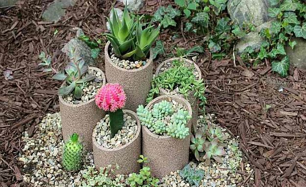 PVC Succulent Outdoor Garden   Amazingly Beautiful Succulent Plants: The Hip DIY Trend To Bring Color To Your