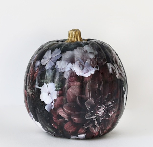 Painted Pumpkins - paint this dark and mysterious floral beauty!