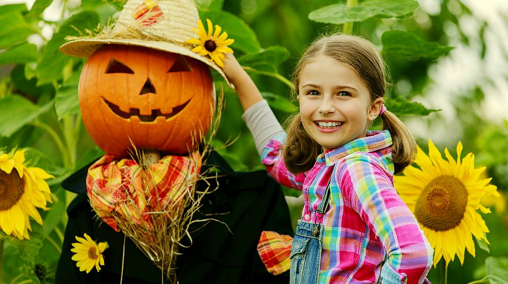 DIY Scarecrow Costume Ideas From Clever to Creepy 543642701b1f
