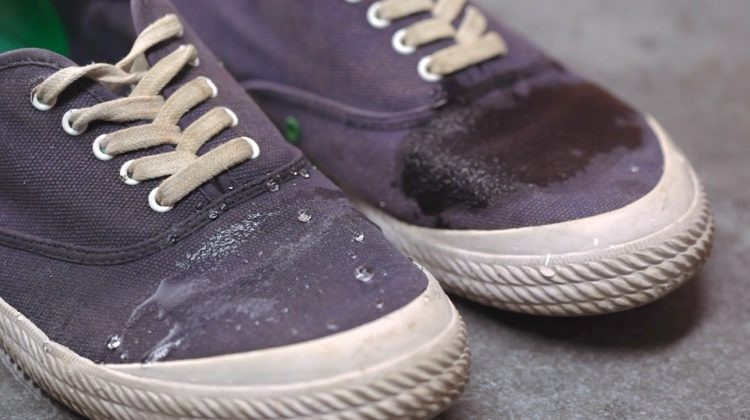 How To Waterproof Your Canvas Shoes