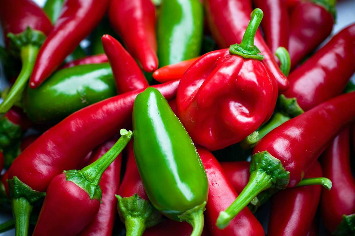 Red and green chili peppers | Top (Delicious) Hot Sauce Recipes You Can Make