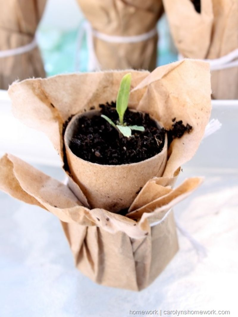 the-dirt-brown-paper-seedling-pots | toilet paper roll flower vase