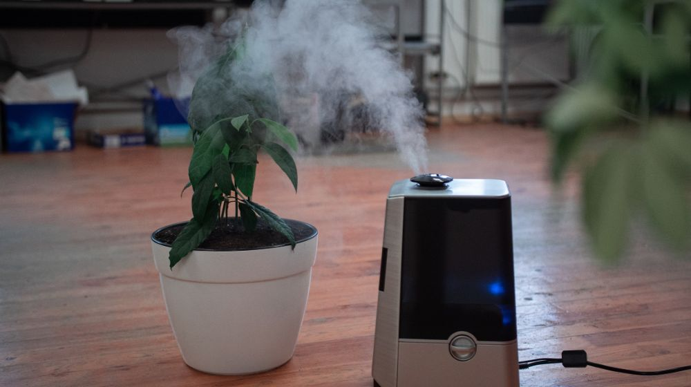 DIY Humidifier | How To Make A DIY Humidifier To Improve Air Quality In Your Home | Featured